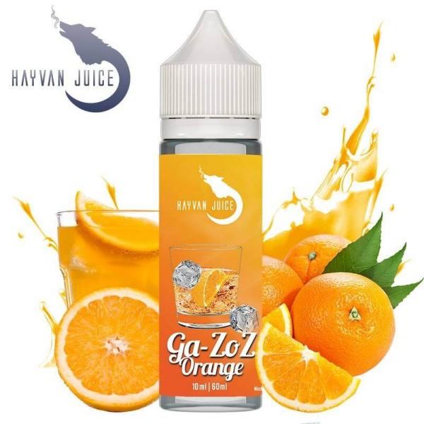 Hayvan Juice Ga-Zoz Orange 10ml
